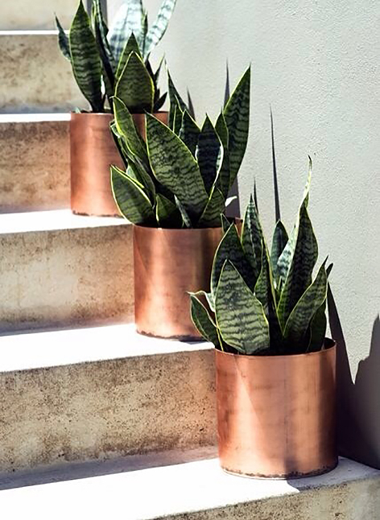 Copper planters look beautiful outdoors. From Tumblr.