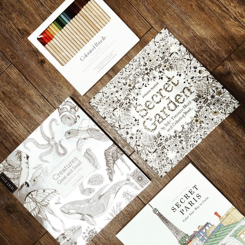 I discovered these gorgeous grown-up colouring books at my favourite store, Indigo...