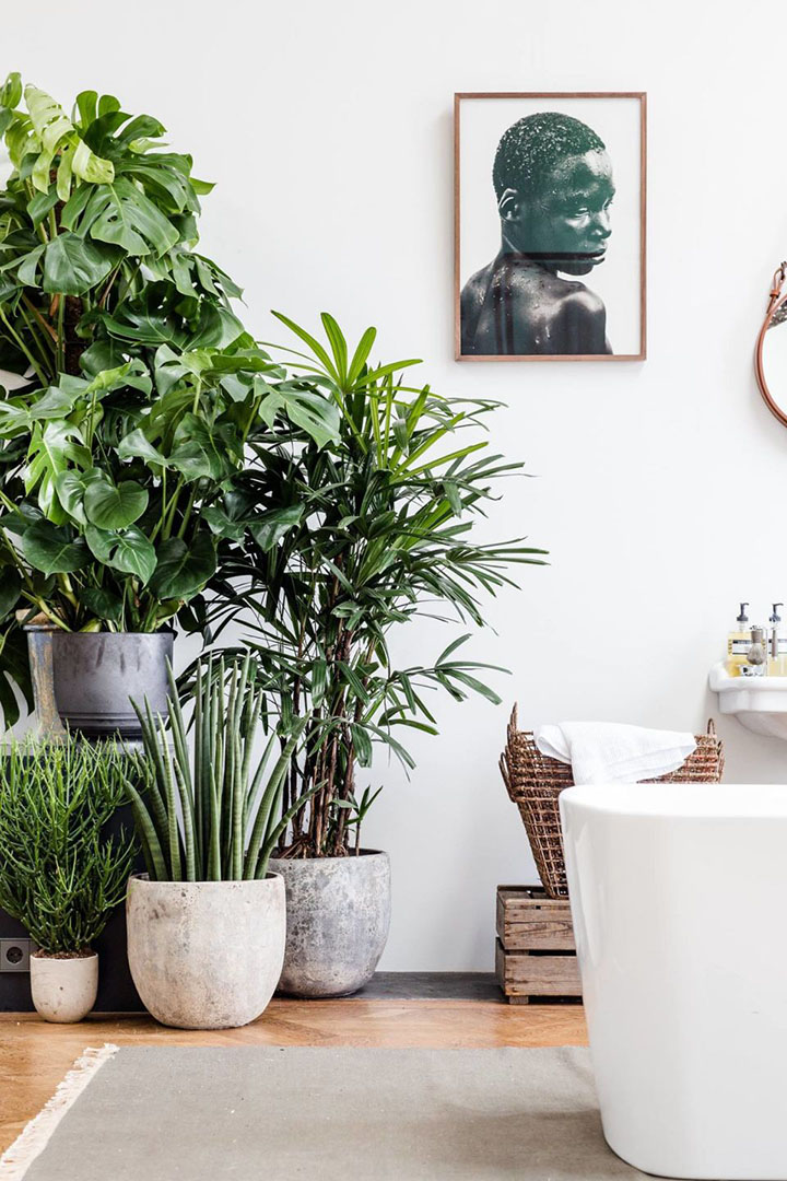 So Fresh & So Chic // 7 Stylish Ways to Display Houseplants! #forthehome #houseplants #sofreshandsochic #urbanjunglebloggers