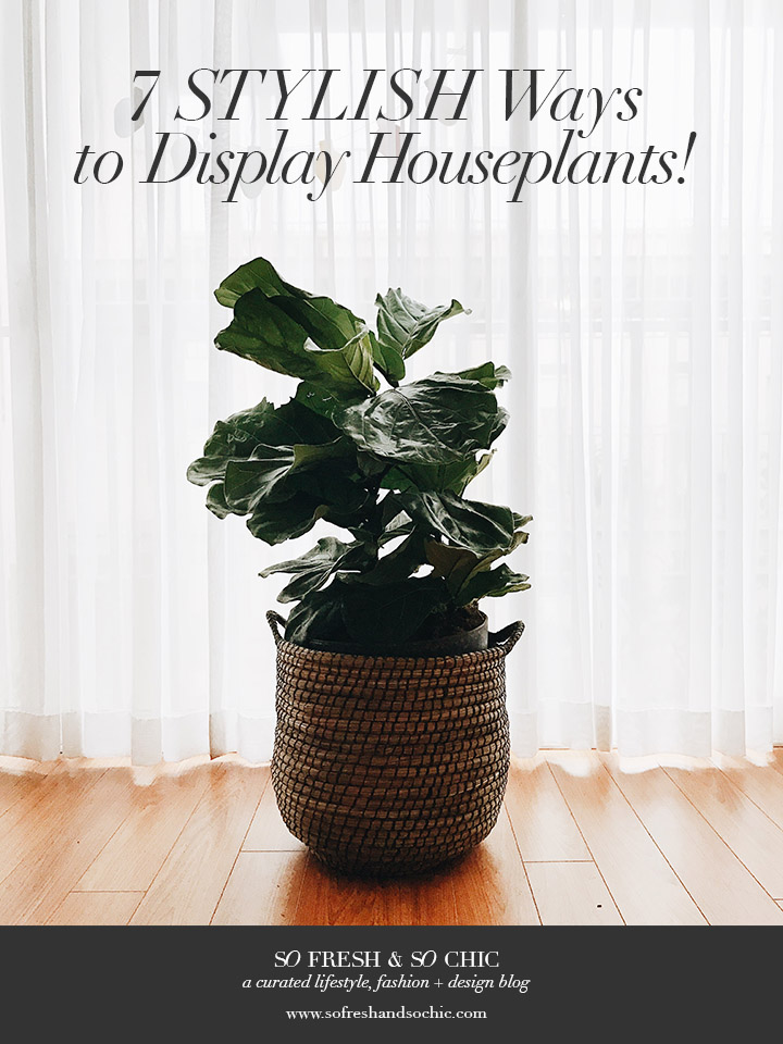 7 Stylish Ways to Display Houseplants! // So Fresh and So Chic