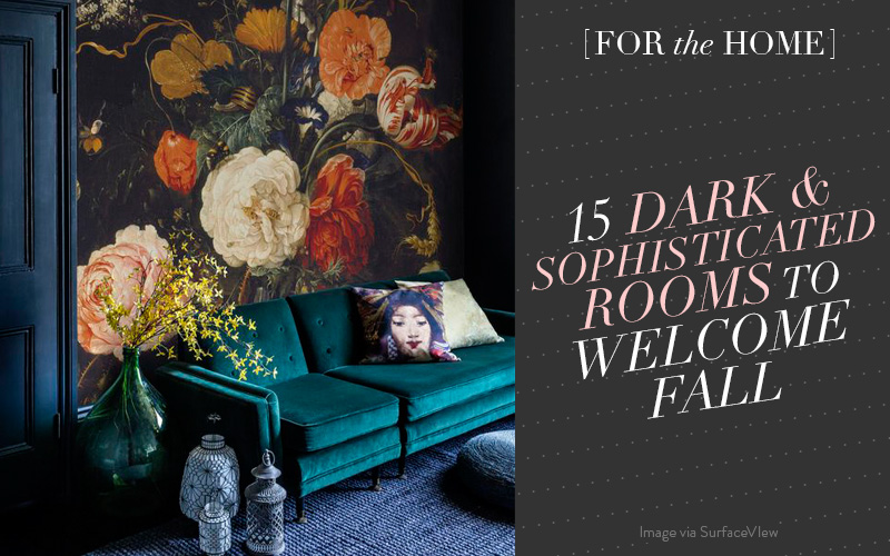 <i>[For the Home]</i><br/> 15 Dark and Sophisticated Rooms to Welcome Fall