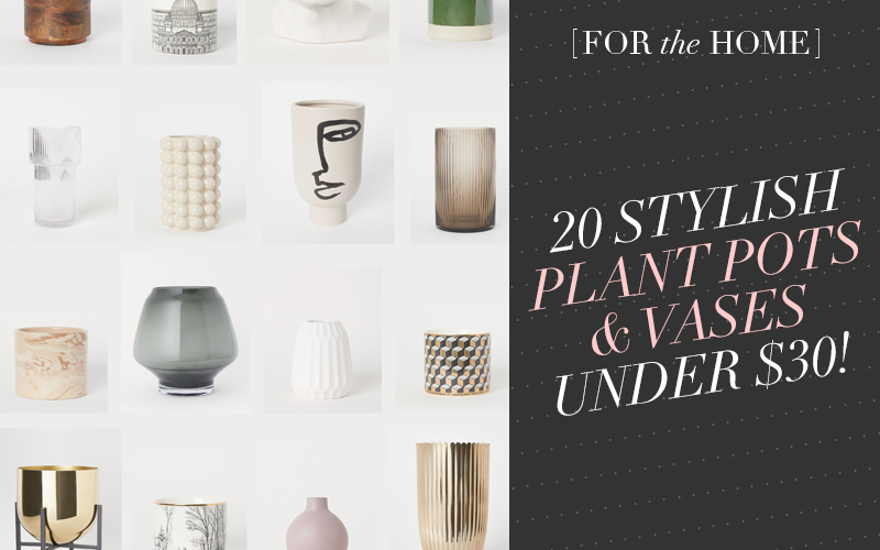 20 Stylish Plant Pots and Vases under $30!
